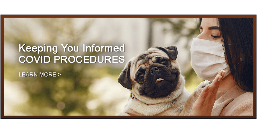Keeping You Informed – COVID Procedures -Learn More
